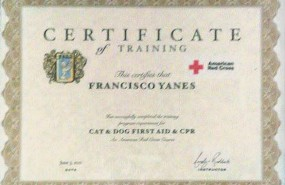 Certificate of Training. Pet Mobile Grooming, Cat & Dog First Aid and CPR